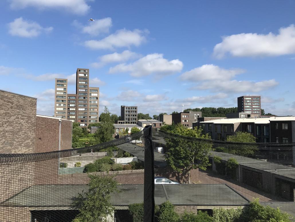 Dakterras Den Haag